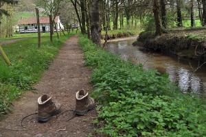 beleef het landschap met wandelgids harrie